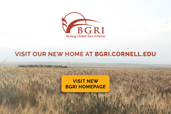 BGRI has moved