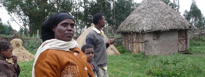Makida Mohammed, Wheat farmer in Ethiopia