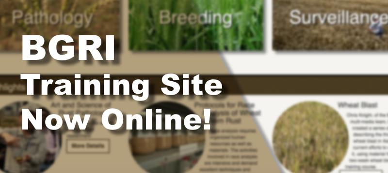 The BGRI training website