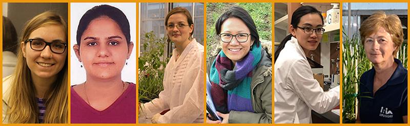 2017 WIT Award Winners (l. - r.) Margaret Krause, Ritika Chowdhary, Sarrah Ben M'Barek-Ben Romdhane, Tine Thach, Weizhen Liu, and Silvia Germán (Mentor Award)