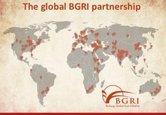 Global BGRI