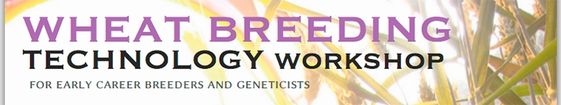 Wheat Breeding Technology Workshop